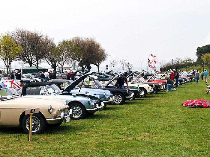 Chrome Bumper B's waiting to be judged on Peoples Park