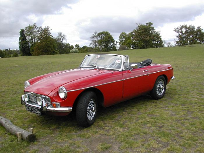 Red Bonk sitting in Knole Park